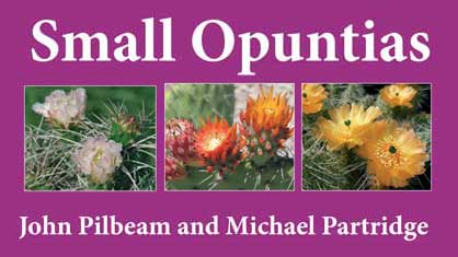 Small Opuntias