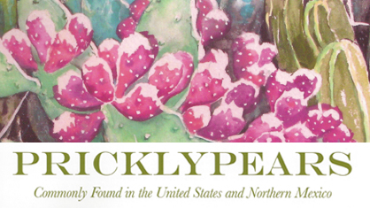 Pricklypears -opuntia book